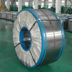 electric steel